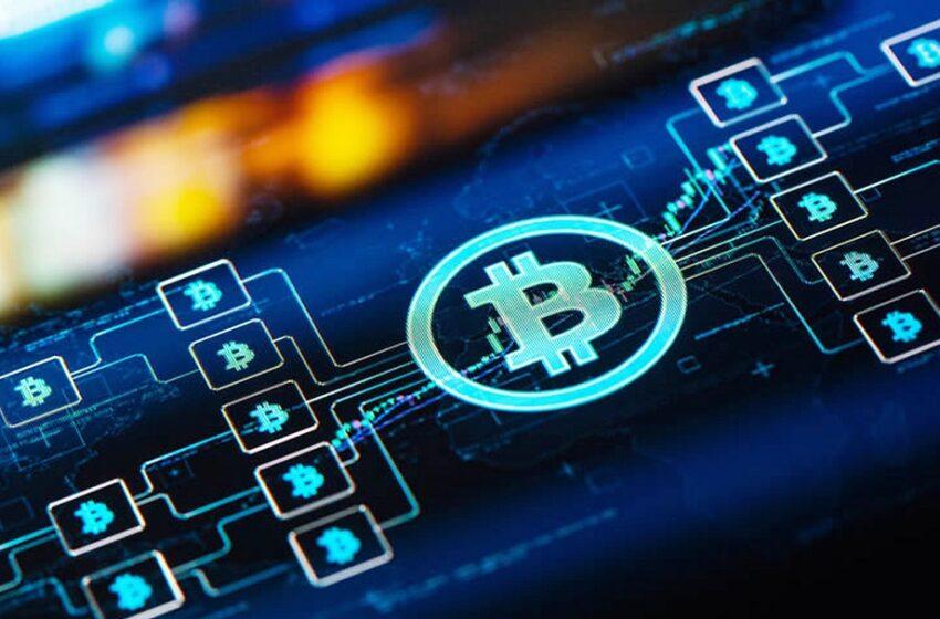 Bitcoin et Crypto-monnaies : une baisse sans précédent provoquée par la Chine